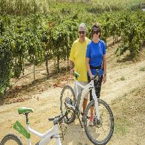 Barcelona Beaches On E-Bike & Wine Experience (FD) with Official guide