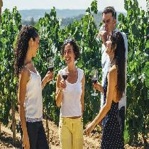 Wine & Cava Experiences And Barcelona By Night Full Day Tour Package