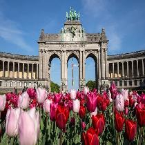 Brussels Atomium - European Capital Sightseeing Tour