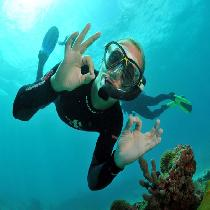 Scuba diving in Thassos with Transfer & Lunch