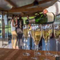 Champagne Day Trip from Paris with Tasting at Nicolas Feuillatte or Moët & Chandon with Official Guide