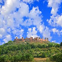 Chianti and Castles Small Group Tour with Olive and Wine tasting