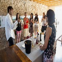 Arrábida Wine Full day Tour-Small Group
