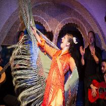 Barcelona Highlights, Tapas & Flamenco Masterclass with Official Guide and Transportation