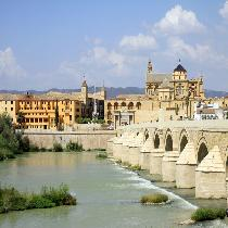 Cordoba Full Day Tour with Official Guide, Entrance Fees and Transportation