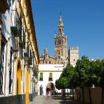 Sevilla Full Day Tour with Guide, Entrance Fee, walking tour and Transportation