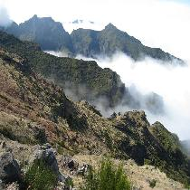 Madeira Peaks Full Day Tour with Official Guide and Transportation
