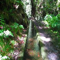 Hidden Corners - Madeira Tour with Official Guide